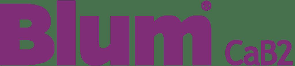logo blumcab2