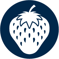 icone cultura morango 1