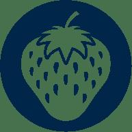 icone cultura morango